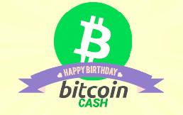 ビットコインキャッシュ誕生