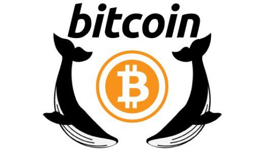 全てはここから始まった。ビットコイン(BTC)を知ろう!!