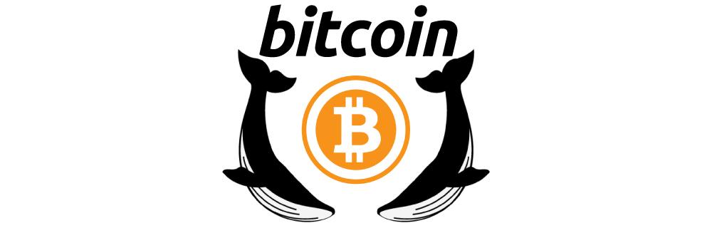 ビットコインアイキャッチ