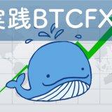 実践BTCFX
