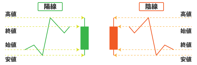 陽線と陰線の違いを説明している画像
